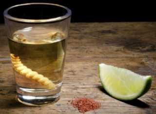 Глисты и алкоголь – что следует знать каждому?