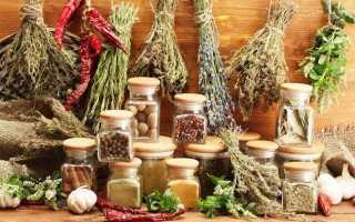 Травы при глистах и паразитах у человека: самые эффективные растения и сборы, рецепты приготовления