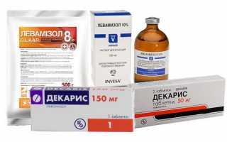 Таблетки от остриц для детей и взрослых — самые эффективные препараты