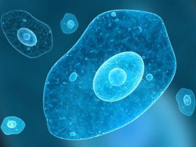 schimmelinfectie kind na antibiotica