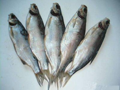 Пелядь риба описторхозная чи ні? » журнал здоров'я iHealth 3