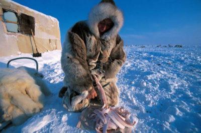 Пелядь риба описторхозная чи ні? » журнал здоров'я iHealth