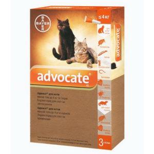 Глистогінні таблетки для кішок » журнал здоров'я iHealth 10