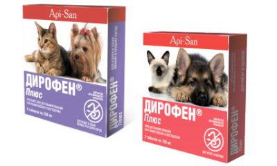 Ліки від глистів для собак » журнал здоров'я iHealth 4