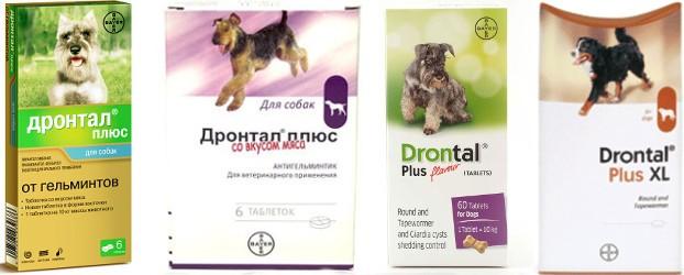 Таблетки від глистів для тварин » журнал здоров'я iHealth 3