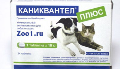 Таблетки від глистів для тварин » журнал здоров'я iHealth 2