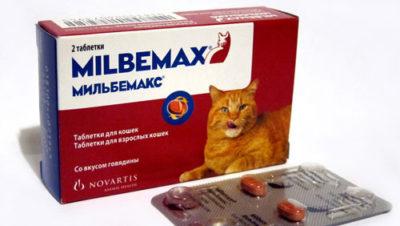 Таблетки від глистів для тварин » журнал здоров'я iHealth 5