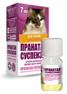 Таблетки від глистів для кошенят » журнал здоров'я iHealth 9