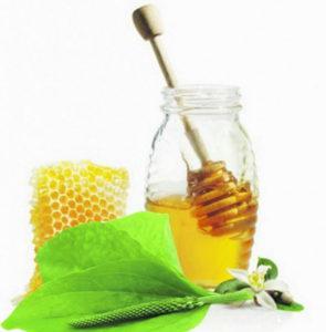 мед и подорожник